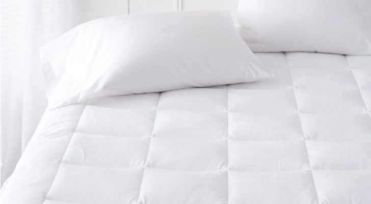 Pinzon Overfilled Ultra Soft Microplush Mattress Pad